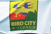Lake Geneva Wisconsin is a Bird City