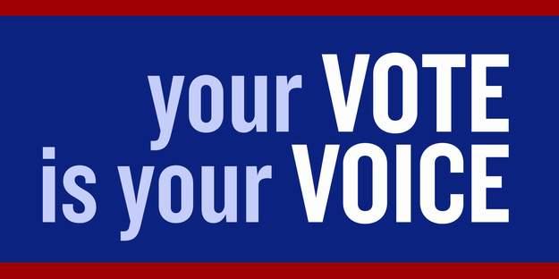 Voting Lake Geneva April 7 2105