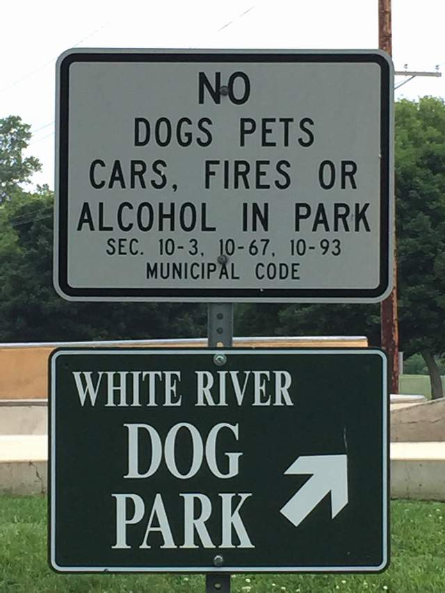 Dog Signs Lake Geneva WI