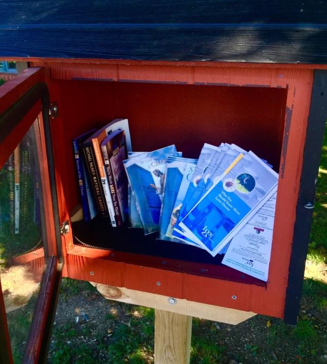 Lake Geneva Free Little Library