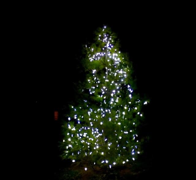 GSR Advent Tree