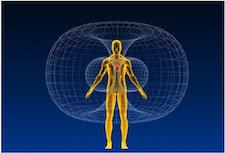 Human Magnetosphere