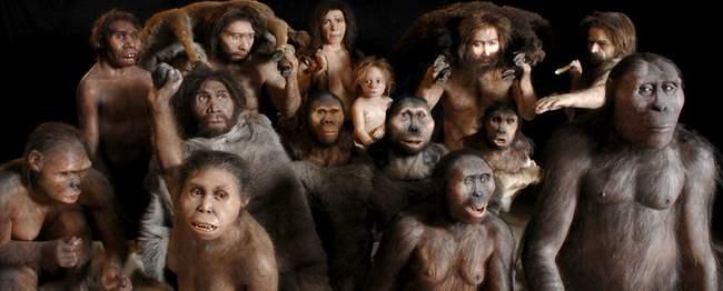 Humaniids Evolution RFRA