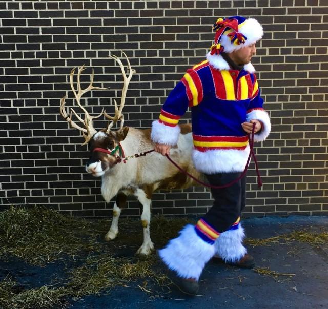 Christmas Reindeer at Geneva Java