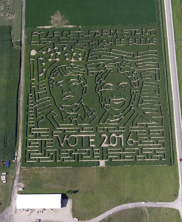 Crop Maze In Pearce's Field