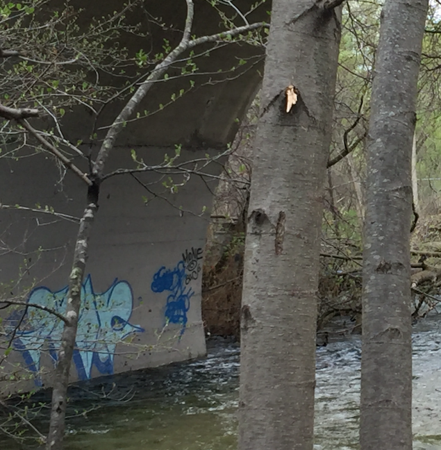 Graffiti Lake Geneva