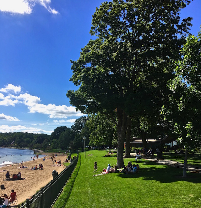 Trees along Beach in City of Lake Geneva