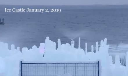 Living Here, January 2, 2019