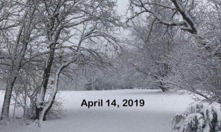 Surprising Stuff, April 17, 2019