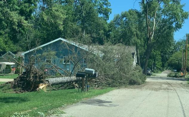 Damage in Pell Lake